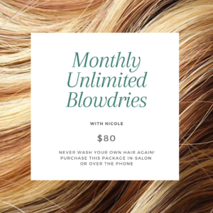 Unlimited Monthly Blow-dry package with Nicole for $80